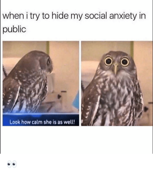 Funny, Anxiety, and How: when i try to hide my social anxiety in  public  Look how calm she is as well! 👀