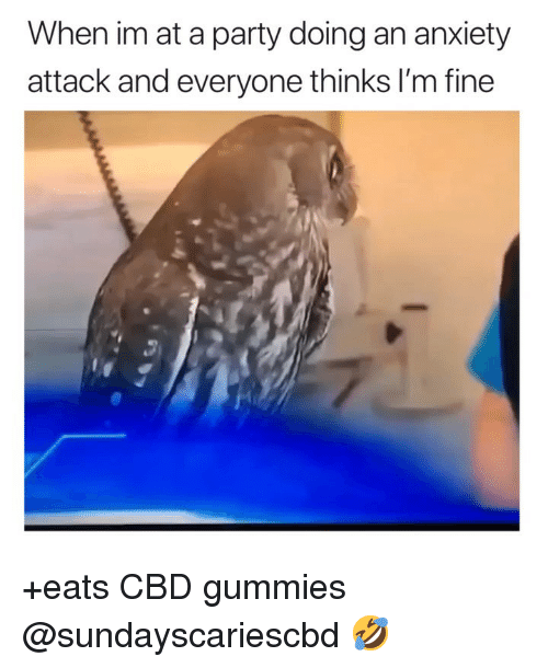Anxiety Attack: When im at a party doing an anxiety  attack and everyone thinks I'm fine +eats CBD gummies @sundayscariescbd 🤣