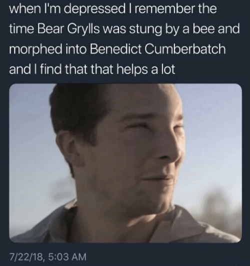 Bear, Time, and Helps: when I'm depressed I remember the  time Bear Grylls was stung by a bee and  morphed into Benedict Cumberbatch  and I find that that helps a lot  7/22/18, 5:03 AM