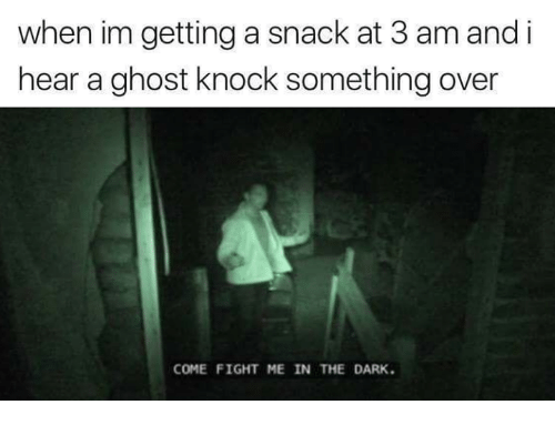Memes, Ghost, and Fight: when im getting a snack at 3 am and i  hear a ghost knock something over  COME FIGHT ME IN THE DARK