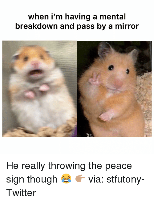 Funny, Twitter, and Mirror: when i'm having a mental  breakdown and pass by a mirror He really throwing the peace sign though 😂 👉🏽 via: stfutony-Twitter