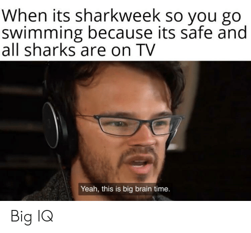 Yeah, Brain, and Sharks: When its sharkweek so you go  swimming because its safe and  all sharks are on TV  Yeah, this is big brain time. Big IQ