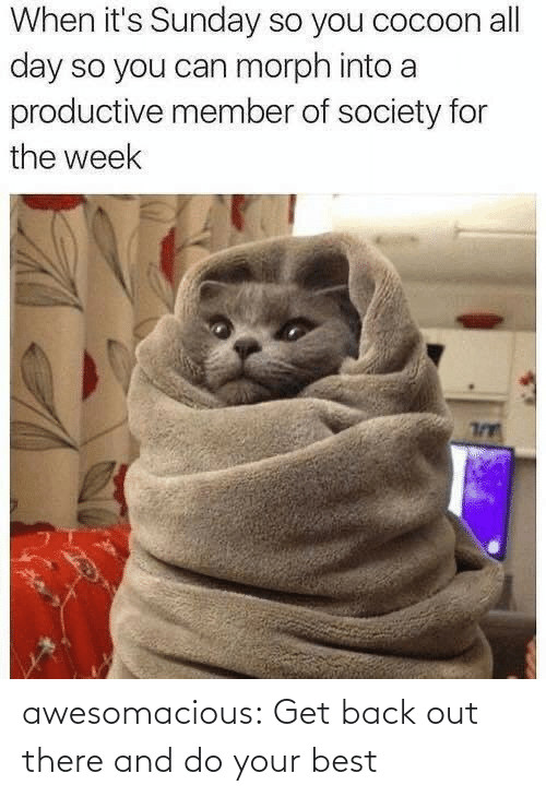 Out There: When it's Sunday so you cocoon all  day so you can morph into a  productive member of society for  the week awesomacious:  Get back out there and do your best