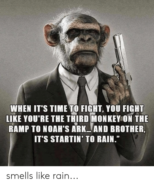 "Memes, Monkey, and Rain: WHEN IT'S TIME TO FIGHT, YOU FIGHT  LIKE YOU'RE THE THIRD MONKEY ON THE  RAMP TO NOAH'S ARK AND BROTHER,  IT'S STARTIN' TO RAIN."" smells like rain..."