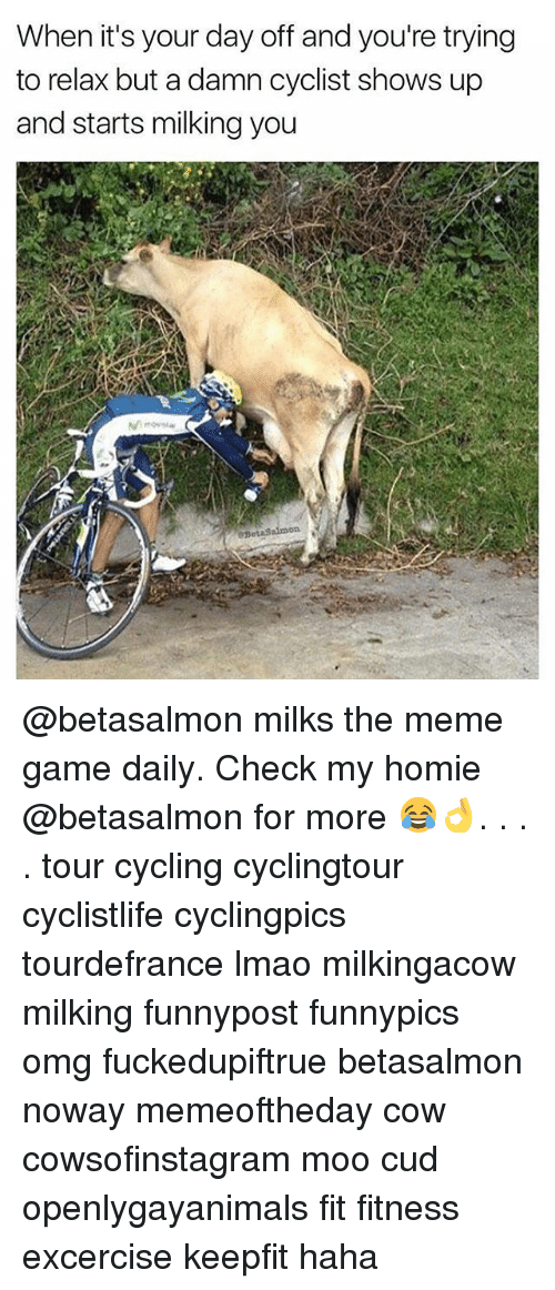 Homie, Lmao, and Meme: When it's your day off and you're trying  to relax but a damn cyclist shows up  and starts milking you @betasalmon milks the meme game daily. Check my homie @betasalmon for more 😂👌. . . . tour cycling cyclingtour cyclistlife cyclingpics tourdefrance lmao milkingacow milking funnypost funnypics omg fuckedupiftrue betasalmon noway memeoftheday cow cowsofinstagram moo cud openlygayanimals fit fitness excercise keepfit haha