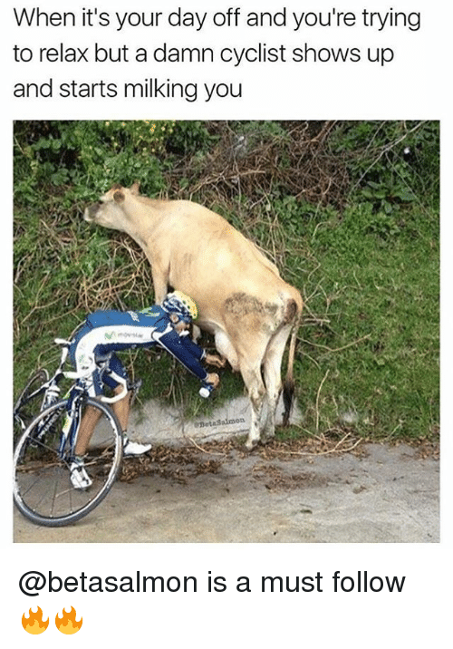 Memes, 🤖, and Damned: When it's your day off and you're trying  to relax but a damn cyclist shows up  and starts milking you @betasalmon is a must follow 🔥🔥