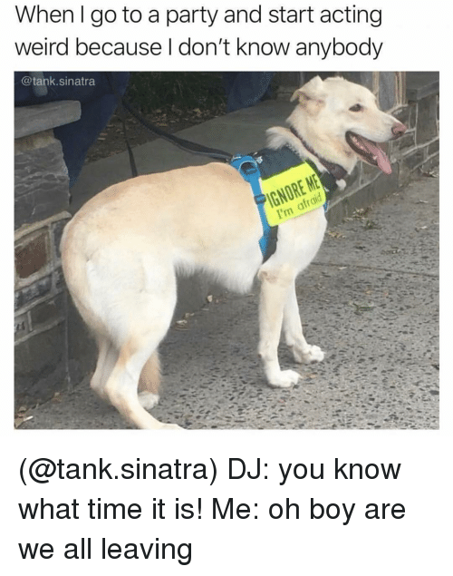 Party, Weird, and Time: When l go to a party and start acting  weird because I don't know anybody  @tank.sinatra (@tank.sinatra) DJ: you know what time it is! Me: oh boy are we all leaving