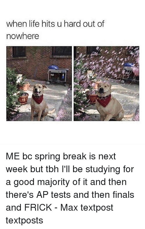 Frickly: when life hits u hard out of  nowhere ME bc spring break is next week but tbh I'll be studying for a good majority of it and then there's AP tests and then finals and FRICK - Max textpost textposts