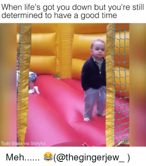Meh, Memes, and Good: When life's got you down but you're still  determined to have a good time  Todd Blass via Storyful Meh...... 😂(@thegingerjew_ )