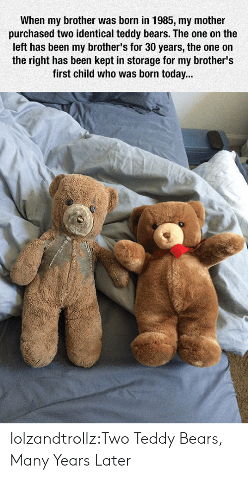 Tumblr, Bears, and Blog: When my brother was born in 1985, my mother  purchased two identical teddy bears. The one on the  left has been my brother's for 30 years, the one on  the right has been kept in storage for my brother's  first child who was born today... lolzandtrollz:Two Teddy Bears, Many Years Later