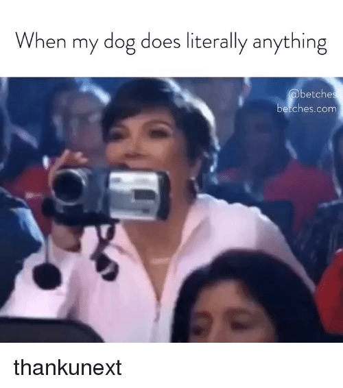 Girl Memes, Dog, and Anything: When my dog does literally anything  betche  etches.comn thankunext