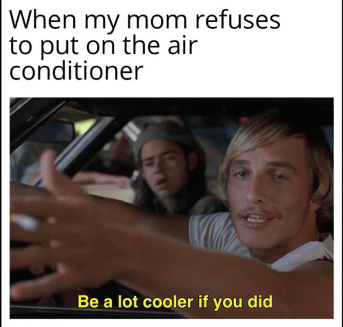 Air Conditioner, Mom, and Air: When my mom refuses  to put on the air  conditioner  Be a lot cooler if you did