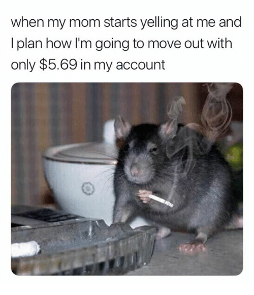 Mom, How, and Account: when my mom starts yelling at me and  I plan how I'm going to move out with  only $5.69 in my account