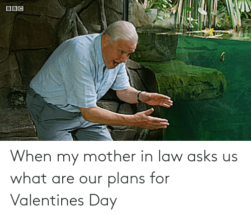 what are: When my mother in law asks us what are our plans for Valentines Day
