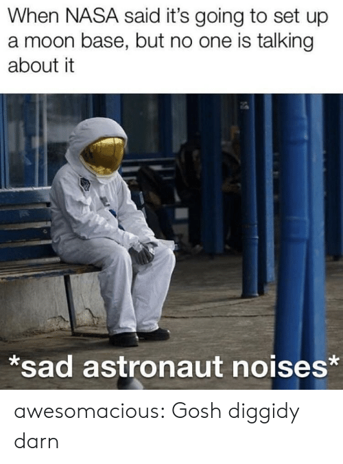 Nasa, Tumblr, and Blog: When NASA said it's going to set up  a moon base, but no one is talking  about it  sad astronaut noises* awesomacious:  Gosh diggidy darn