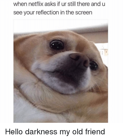 Hello, Netflix, and Hello Darkness, My Old Friend: when netflix asks if ur still there and u  see your reflection in the screen Hello darkness my old friend