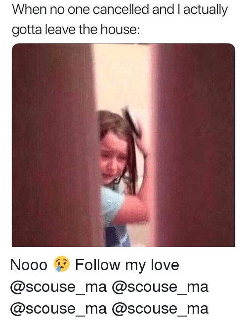 Love, Memes, and House: When no one cancelled and l actually  gotta leave the house: Nooo 😢 Follow my love @scouse_ma @scouse_ma @scouse_ma @scouse_ma