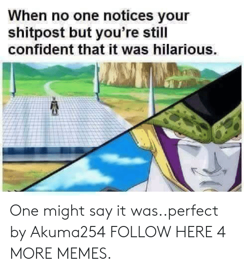 Dank, Memes, and Target: When no one notices your  shitpost but you're still  confident that it was hilarious. One might say it was..perfect by Akuma254 FOLLOW HERE 4 MORE MEMES.
