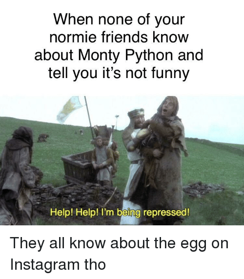 monty python: When none of your  normie friends know  about Monty Python and  tell you it's not funny  Help! Help! I'm being repressed They all know about the egg on Instagram tho