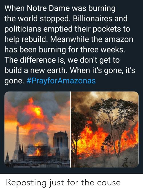 Amazon, Funny, and Earth: When Notre Dame was burning  the world stopped. Billionaires and  politicians emptied their pockets to  help rebuild. Meanwhile the amazon  has been burning for three weeks.  The difference is, we don't get to  build a new earth. When it's gone, it's  gone. Reposting just for the cause