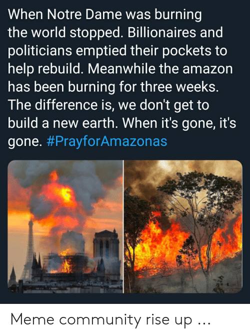 Amazon, Community, and Meme: When Notre Dame was burning  the world stopped. Billionaires and  politicians emptied their pockets to  help rebuild. Meanwhile the amazon  has been burning for three weeks.  The difference is, we don't get to  build a new earth. When it's gone, it's  gone. Meme community rise up ...