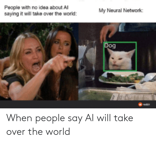 When People: When people say AI will take over the world