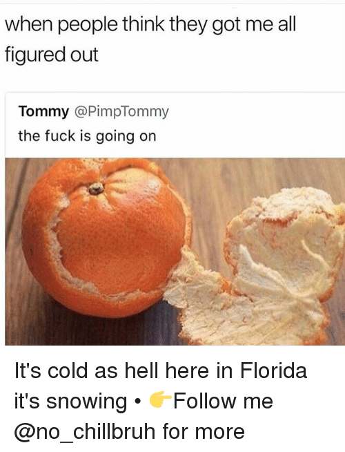 Funny, Florida, and Fuck: when people think they got me all  figured out  Tommy @PimpTommy  the fuck is going on It's cold as hell here in Florida it's snowing • 👉Follow me @no_chillbruh for more