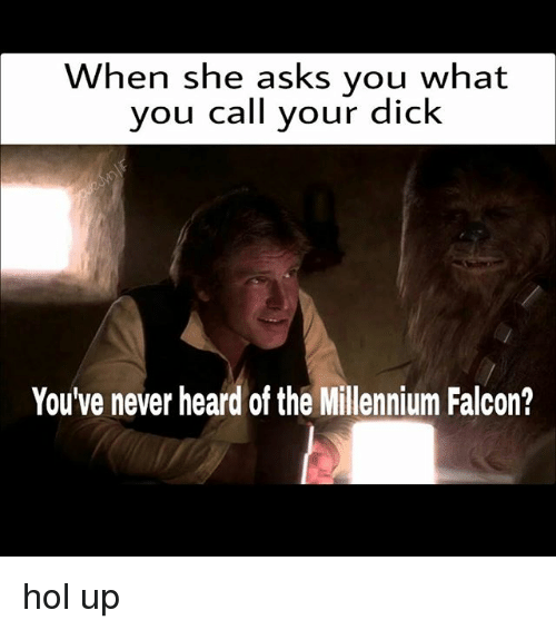 Memes, Millennium Falcon, and Dick: When she asks you what  you call your dick  You've never heard of the Millennium Falcon? hol up