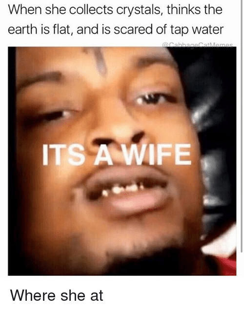 Earth, Water, and Wife: When she collects crystals, thinks the  earth is flat, and is scared of tap water  ITS A WIFE Where she at