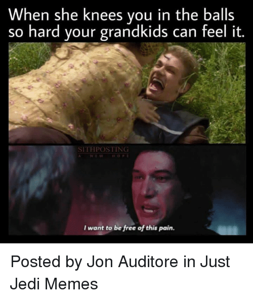 Jedi, Memes, and Star Wars: When she knees you in the balls  so hard your grandkids can feel it.  SITHPOSTING  HOPE  I want to be free of this pain. Posted by Jon Auditore in Just Jedi Memes