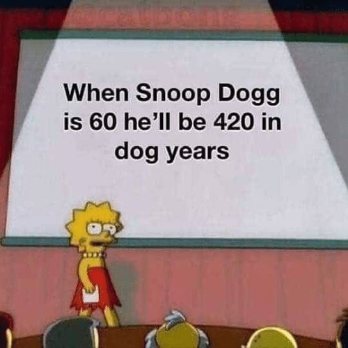 Dank, Snoop, and Snoop Dogg: When Snoop Dogg  is 60 he'll be 420 in  dog years