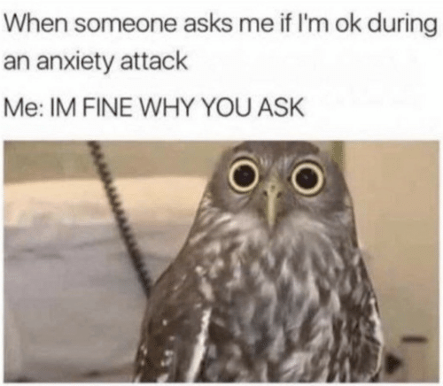 Anxiety, Anxiety Attack, and Asks: When someone asks me if I'm ok during  an anxiety attack  Me: IM FINE WHY YOU ASK