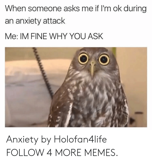 Anxiety Attack: When someone asks me if I'm ok during  an anxiety attack  Me: IM FINE WHY YOU ASK Anxiety by Holofan4life FOLLOW 4 MORE MEMES.