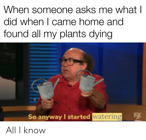 What I: When someone asks me what I  did when I came home and  found all my plants dying  54  So anyway I started watering All I know