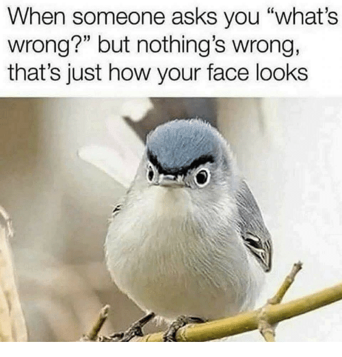 "Asks, How, and Face: When someone asks you ""what's  wrong?"" but nothing's wrong,  that's just how your face looks"