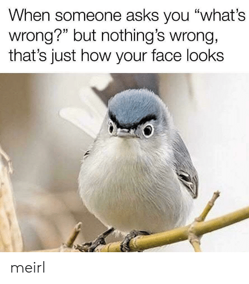 "your face: When someone asks you ""what's  wrong?"" but nothing's wrong,  that's just how your face looks meirl"