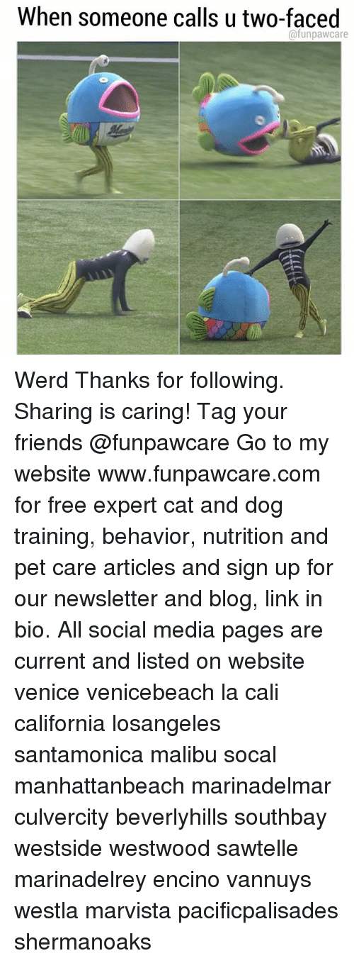 Friends, Memes, and Social Media: When someone calls u two-faced  @funpawcare Werd Thanks for following. Sharing is caring! Tag your friends @funpawcare Go to my website www.funpawcare.com for free expert cat and dog training, behavior, nutrition and pet care articles and sign up for our newsletter and blog, link in bio. All social media pages are current and listed on website venice venicebeach la cali california losangeles santamonica malibu socal manhattanbeach marinadelmar culvercity beverlyhills southbay westside westwood sawtelle marinadelrey encino vannuys westla marvista pacificpalisades shermanoaks