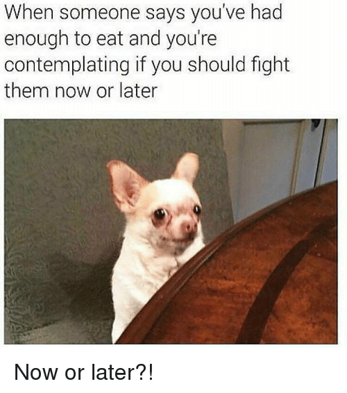 Gym, Fight, and Them: When someone says you've had  enough to eat and you're  contemplating if you should fight  them now or later Now or later?!