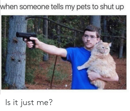 When Someone: when someone tells my pets to shut up Is it just me?