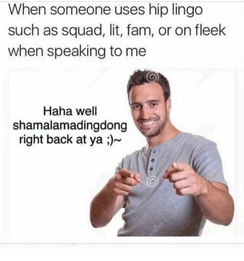 Fam, Lit, and On Fleek: When someone uses hip lingo  such as squad, lit, fam, or on fleek  when speaking to me  Haha well  shamalamadingdong  right back at ya ;)  Tcime