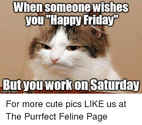 When Someone Wishes You Happy Friday Nngflipcom Work Saturday For