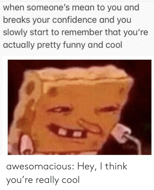 Confidence, Funny, and Tumblr: when someone's mean to you and  breaks your confidence and you  slowly start to remember that you're  actually pretty funny and cool awesomacious:  Hey, I think you're really cool