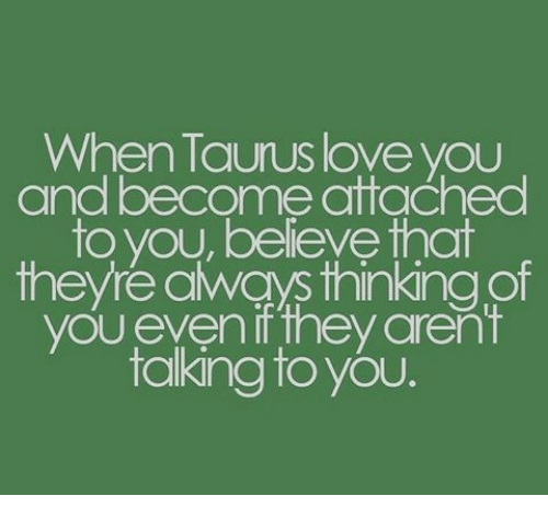 When Taurus Love You and Become Attached to You Beleve That