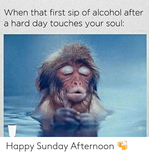 Memes, Alcohol, and Happy: When that first sip of alcohol after  a hard day touches your soul Happy Sunday Afternoon 🍻