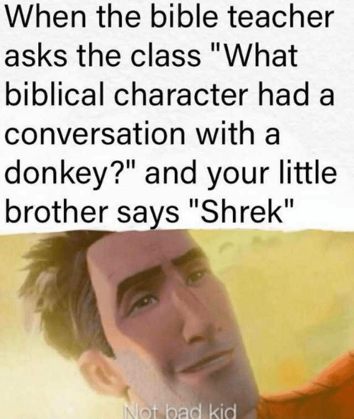 "The Bible: When the bible teacher  asks the class ""What  biblical character had a  conversation with a  donkey?"" and your little  brother says ""Shrek""  Not bad kid"