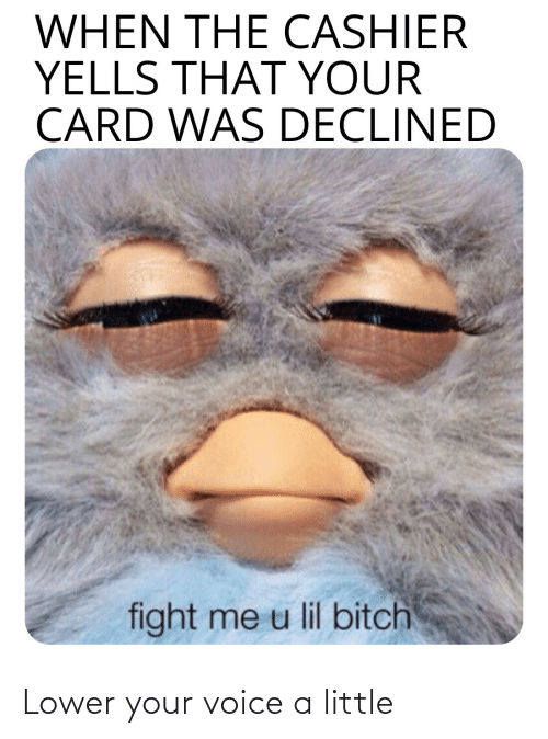 lil bitch: WHEN THE CASHIER  YELLS THAT YOUR  CARD WAS DECLINED  fight me u lil bitch Lower your voice a little