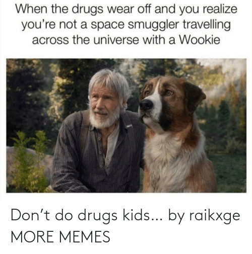 You Realize: When the drugs wear off and you realize  you're not a space smuggler travelling  across the universe with a Wookie Don't do drugs kids… by raikxge MORE MEMES
