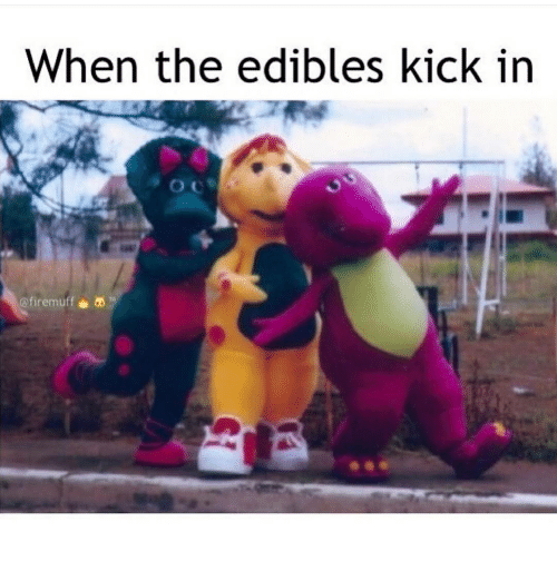 Memes, 🤖, and Edibles: When the edibles kick in  @fire muff