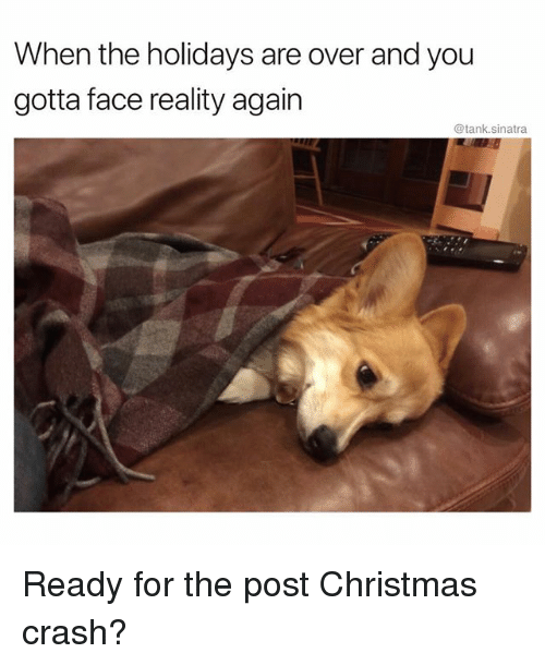 Christmas, Funny, and Reality: When the holidays are over and you  gotta face reality again  @tank.sinatra Ready for the post Christmas crash?
