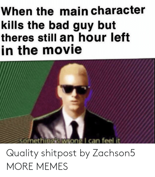 character: When the main character  kills the bad guy but  theres still an hour left  in the movie  somethingis Wrong I can feel it Quality shitpost by Zachson5 MORE MEMES